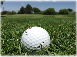 golf-aacl